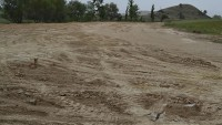 Dazkırı Çamlık Parkı Büyüyor
