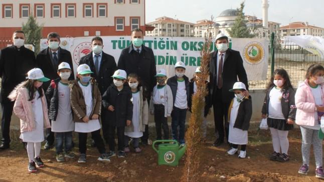 Dinar'da Okullar Ağaçlandırıldı