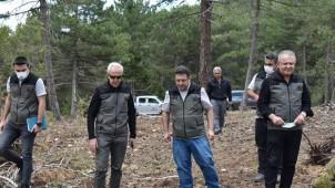 Orman Bölge Müdürümüz Dinar İşletmesi Gençleştirme Sahalarında İncelemelerde Bulundu