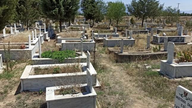 Dedesi ve Ninesinin Mezarına Kenevir Ekti