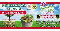 Çiçek Festivali Başlyor